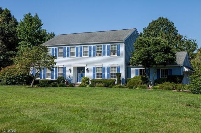 24 Charleston Dr, Montgomery Twp., NJ 08558 (MLS #3413725) :: The Dekanski Home Selling Team