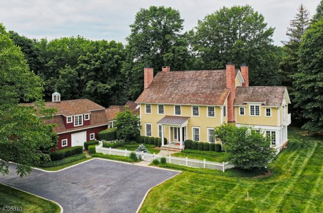 3 Prudence Ln, Mendham Twp., NJ 07945 (MLS #3413894) :: The Dekanski Home Selling Team