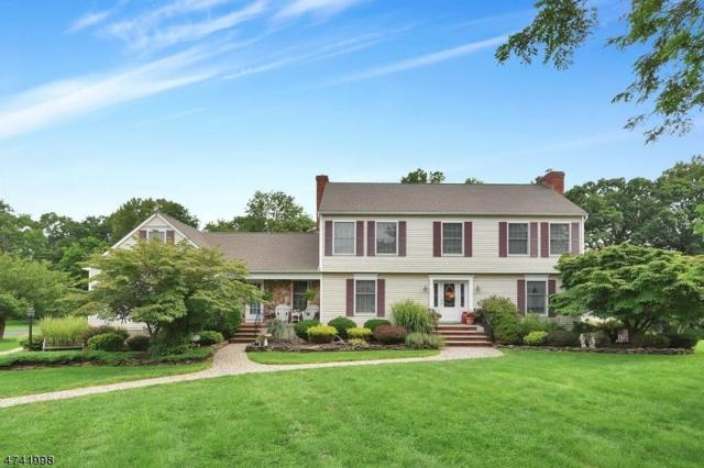 42 Cottage Lane, Sparta Twp., NJ 07871 (MLS #3413955) :: The Dekanski Home Selling Team