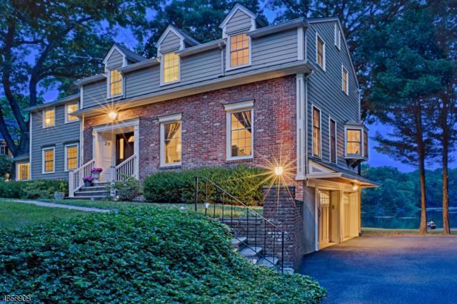 39 N Pocono Rd, Mountain Lakes Boro, NJ 07046 (MLS #3413999) :: SR Real Estate Group