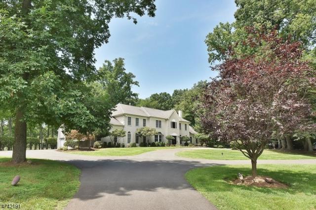 7 Howell Dr, Chester Twp., NJ 07931 (MLS #3414118) :: The Dekanski Home Selling Team