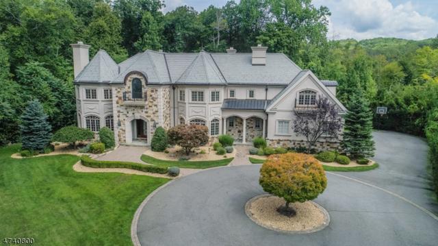 12 Pond View, Montville Twp., NJ 07045 (MLS #3414211) :: The Dekanski Home Selling Team