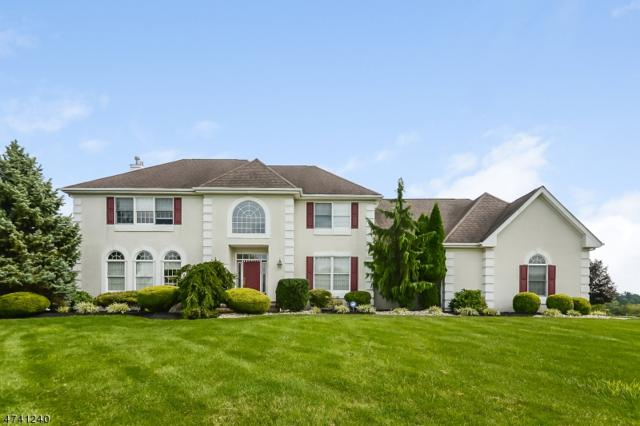 3 Ridgeview Court, Raritan Twp., NJ 08551 (MLS #3414311) :: The Dekanski Home Selling Team
