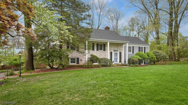 4 Barnard Pl, Pequannock Twp., NJ 07444 (MLS #3414424) :: The Dekanski Home Selling Team