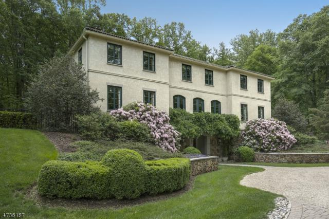 555 Tempe Wick Rd, Harding Twp., NJ 07960 (MLS #3414436) :: The Dekanski Home Selling Team