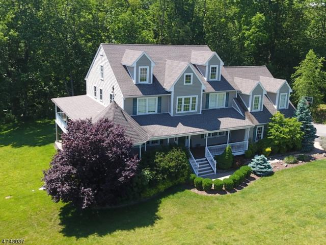 21 Cottonwood Trl, Sparta Twp., NJ 07871 (MLS #3414824) :: The Dekanski Home Selling Team