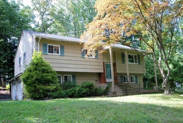 171 Park Ave, Randolph Twp., NJ 07869 (MLS #3414845) :: The Dekanski Home Selling Team
