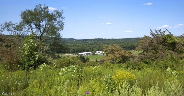 37 Ravenswood Ln, Harding Twp., NJ 07960 (MLS #3414925) :: The Dekanski Home Selling Team