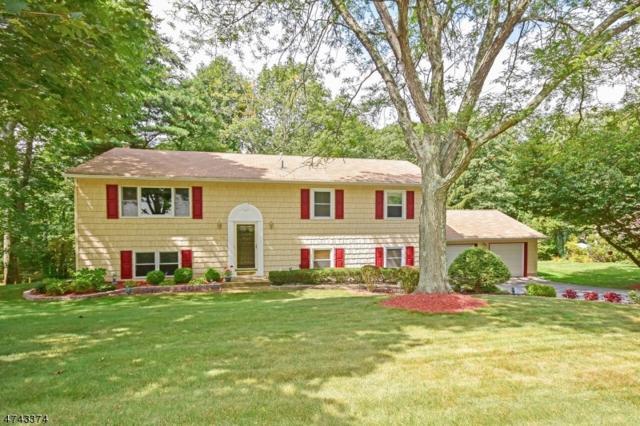 25 Bisset Dr, West Milford Twp., NJ 07480 (MLS #3415144) :: The Dekanski Home Selling Team