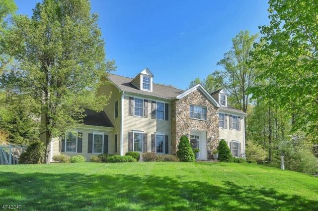 3 Connet Ln, Mendham Twp., NJ 07945 (MLS #3415146) :: The Dekanski Home Selling Team