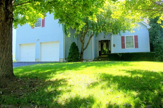 14 Frelinghuysen Street, Belvidere Twp., NJ 07823 (MLS #3415159) :: Keller Williams Real Estate