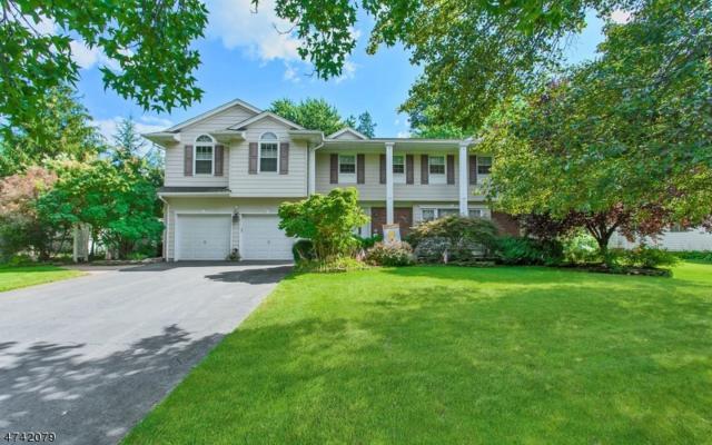 317 Willow Way, Clark Twp., NJ 07066 (#3415517) :: Daunno Realty Services, LLC