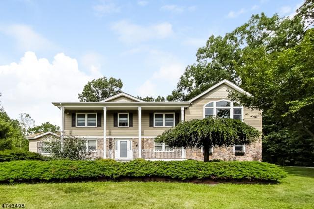 5 Ezra Pl, Roxbury Twp., NJ 07850 (MLS #3415668) :: The Dekanski Home Selling Team