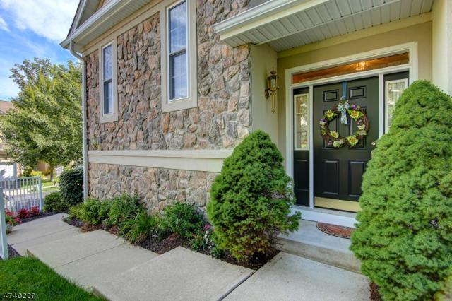 87 Henning Ter, Denville Twp., NJ 07834 (MLS #3415679) :: The Dekanski Home Selling Team