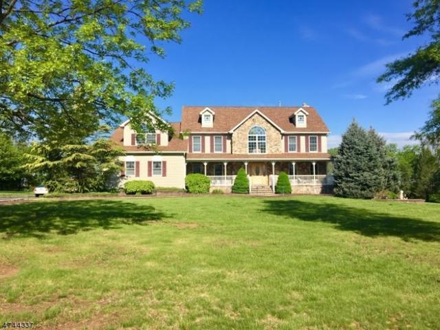 64 Chamberlain Dr, Hillsborough Twp., NJ 08844 (MLS #3416006) :: The Dekanski Home Selling Team