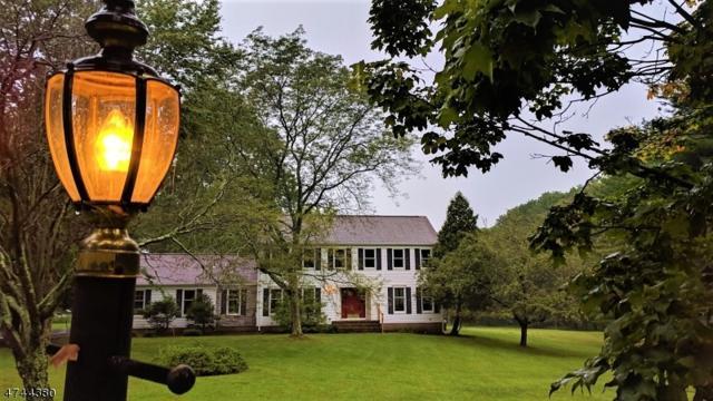 9 Cornfield Ln, Readington Twp., NJ 08889 (MLS #3416013) :: The Dekanski Home Selling Team