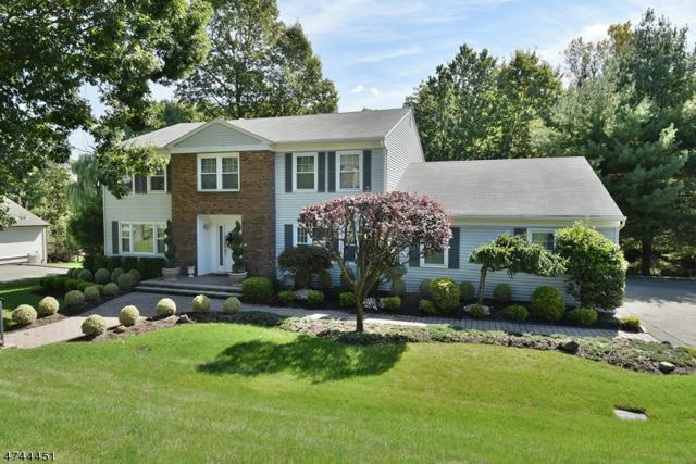 5 Howell Dr, West Orange Twp., NJ 07052 (MLS #3416112) :: The Dekanski Home Selling Team