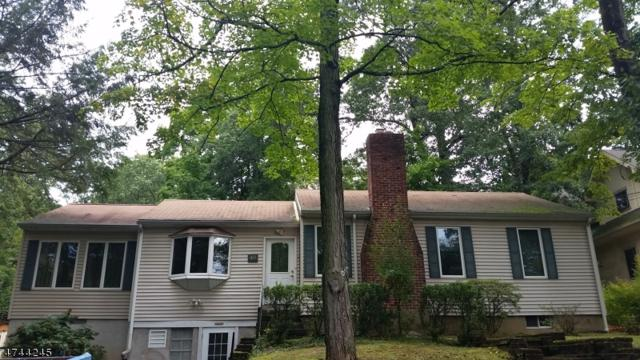 49 Beech Ter, Wayne Twp., NJ 07470 (MLS #3416138) :: The Dekanski Home Selling Team