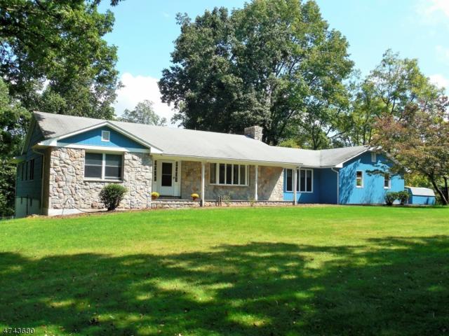 138 Mitchell Rd, Mansfield Twp., NJ 07863 (MLS #3416362) :: The Dekanski Home Selling Team