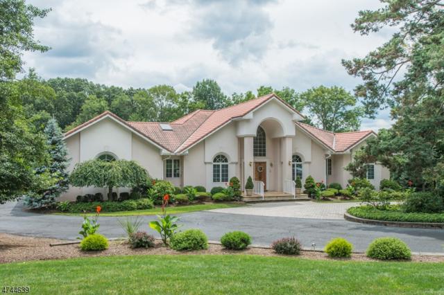 56 Mountain Ave, Long Hill Twp., NJ 07933 (MLS #3416640) :: The Dekanski Home Selling Team