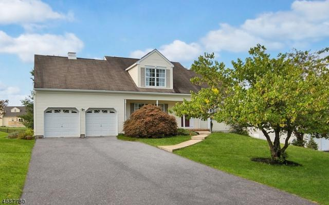 4 Robeson Rdg, Oxford Twp., NJ 07863 (MLS #3416706) :: The Dekanski Home Selling Team
