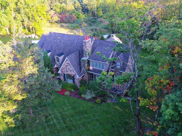25 Cold Hill Rd, Mendham Twp., NJ 07960 (MLS #3416764) :: The Dekanski Home Selling Team