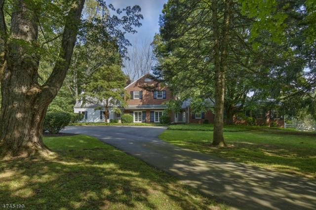 20 Gaston Rd, Morris Twp., NJ 07960 (MLS #3416885) :: The Dekanski Home Selling Team