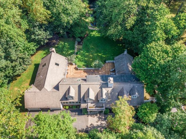 64 Great Hills Rd, Millburn Twp., NJ 07078 (MLS #3416939) :: The Sue Adler Team