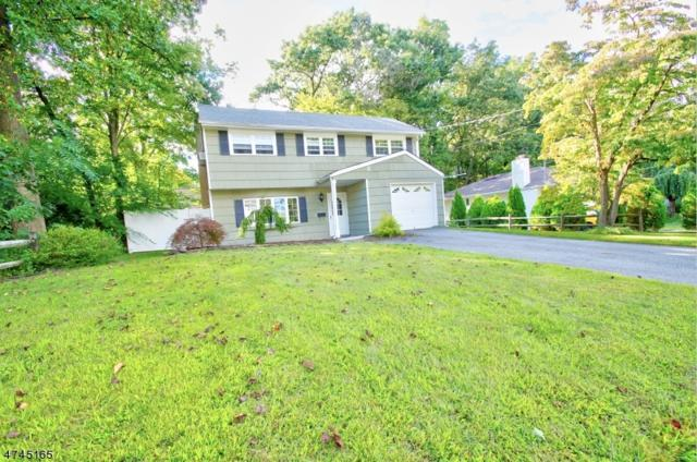 89 Reservoir Ave, Butler Boro, NJ 07405 (MLS #3417017) :: The Dekanski Home Selling Team