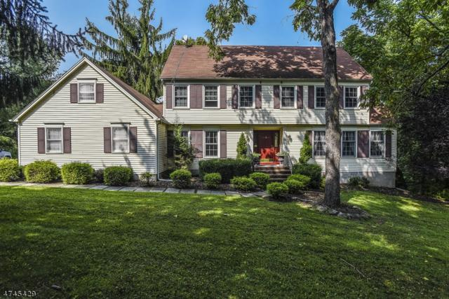 10 Cider Mill Ln, Washington Twp., NJ 07865 (MLS #3417051) :: The Dekanski Home Selling Team