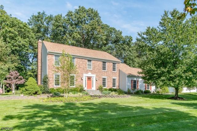 50 Kevin Dr, Mount Olive Twp., NJ 07836 (MLS #3417248) :: The Dekanski Home Selling Team