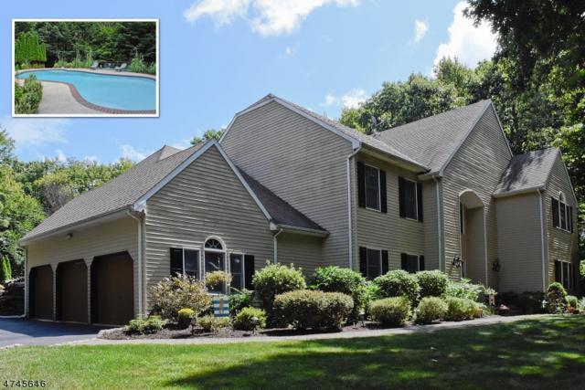 75 Underrock Rd, Sparta Twp., NJ 07871 (MLS #3417265) :: The Dekanski Home Selling Team