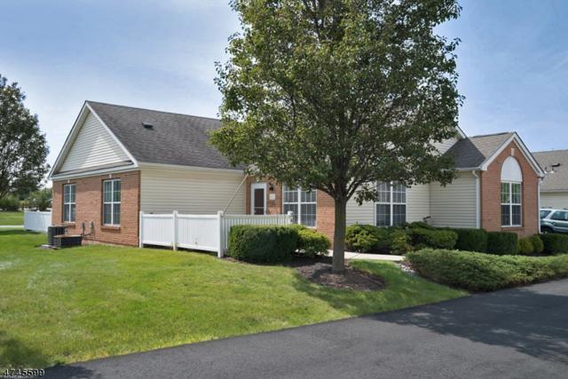 242 Chandler Court, Hillsborough Twp., NJ 08844 (MLS #3417468) :: The Dekanski Home Selling Team