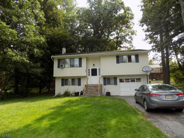 20 Esther Dr, Vernon Twp., NJ 07422 (MLS #3417610) :: The Dekanski Home Selling Team