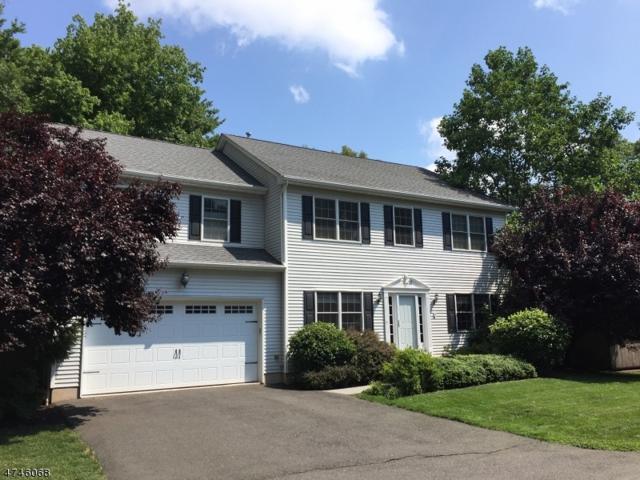 3 Adams St, Franklin Twp., NJ 08873 (MLS #3417652) :: The Dekanski Home Selling Team