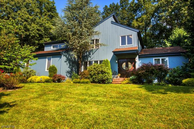 10 N Bayard Ln, Mahwah Twp., NJ 07430 (MLS #3417653) :: The Dekanski Home Selling Team