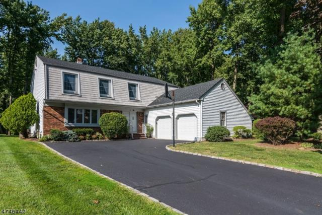 12 Fox Hill Rd, Edison Twp., NJ 08820 (#3417997) :: Daunno Realty Services, LLC