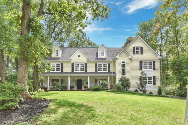 31 Little Wolf Rd, Summit City, NJ 07901 (MLS #3418196) :: The Dekanski Home Selling Team
