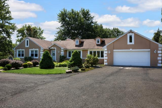 6 Wren Ln, Readington Twp., NJ 08853 (MLS #3418328) :: The Dekanski Home Selling Team