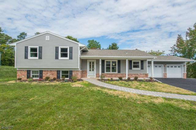 14 Fleetwood Dr, Rockaway Twp., NJ 07866 (MLS #3418350) :: The Dekanski Home Selling Team