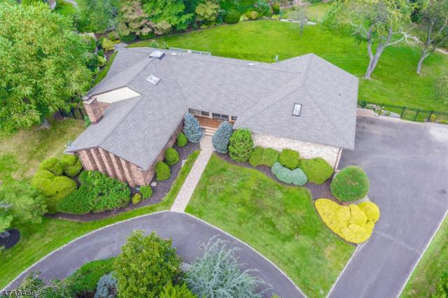 18 Greensview Dr, Scotch Plains Twp., NJ 07076 (#3418520) :: Daunno Realty Services, LLC