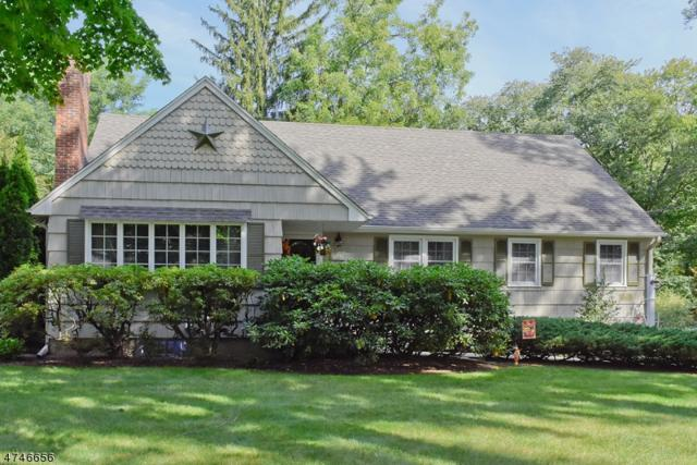810 Park Rd, Parsippany-Troy Hills Twp., NJ 07950 (MLS #3418704) :: SR Real Estate Group