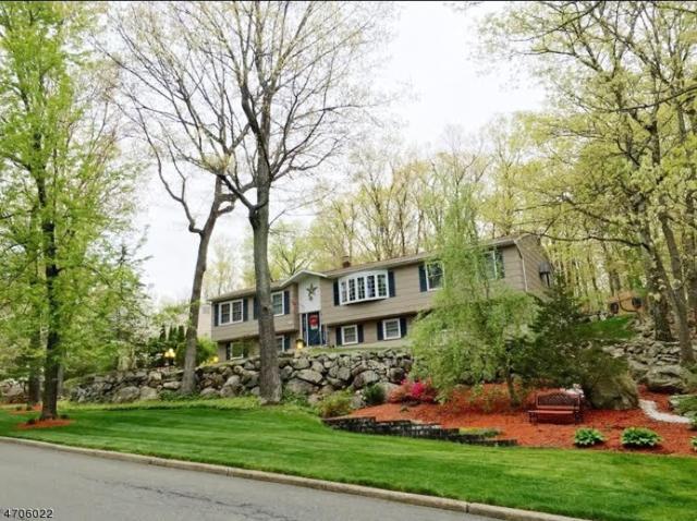 16 Northgate Park, Ringwood Boro, NJ 07456 (MLS #3418895) :: The Dekanski Home Selling Team
