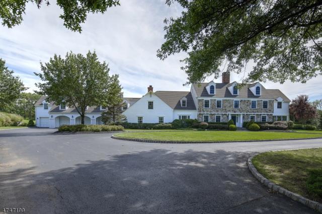 520 Pottersville Rd, Bedminster Twp., NJ 07934 (MLS #3418904) :: The Dekanski Home Selling Team