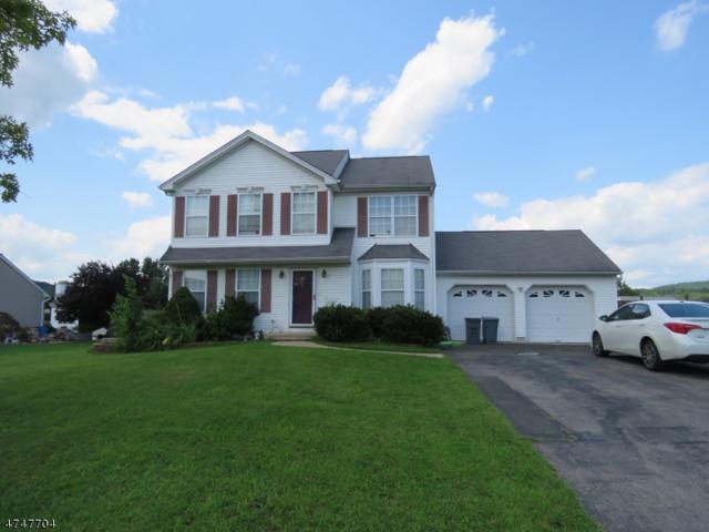 28 Robeson Rdg, Oxford Twp., NJ 07863 (MLS #3419169) :: The Dekanski Home Selling Team