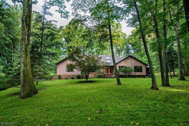 35 Twin Brooks Trl, Chester Twp., NJ 07930 (MLS #3419613) :: The Dekanski Home Selling Team