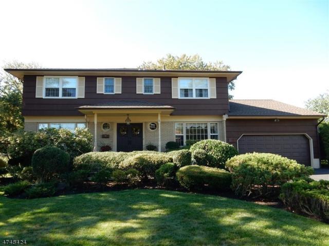 56 Mae Belle Dr, Clark Twp., NJ 07066 (MLS #3419864) :: The Dekanski Home Selling Team