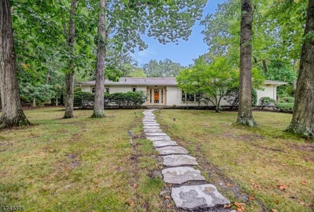 26 Clive Hills Rd, Millburn Twp., NJ 07078 (MLS #3419894) :: The Dekanski Home Selling Team