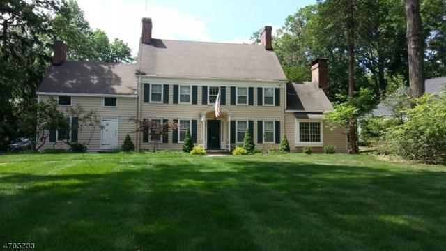 1777 Sleepy Hollow Ln, Plainfield City, NJ 07060 (MLS #3419956) :: The Dekanski Home Selling Team