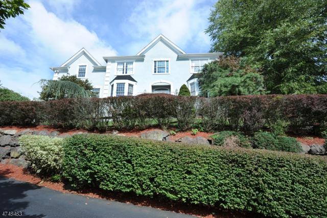 15 Vizcaya Ct, Wayne Twp., NJ 07470 (MLS #3419985) :: The Dekanski Home Selling Team